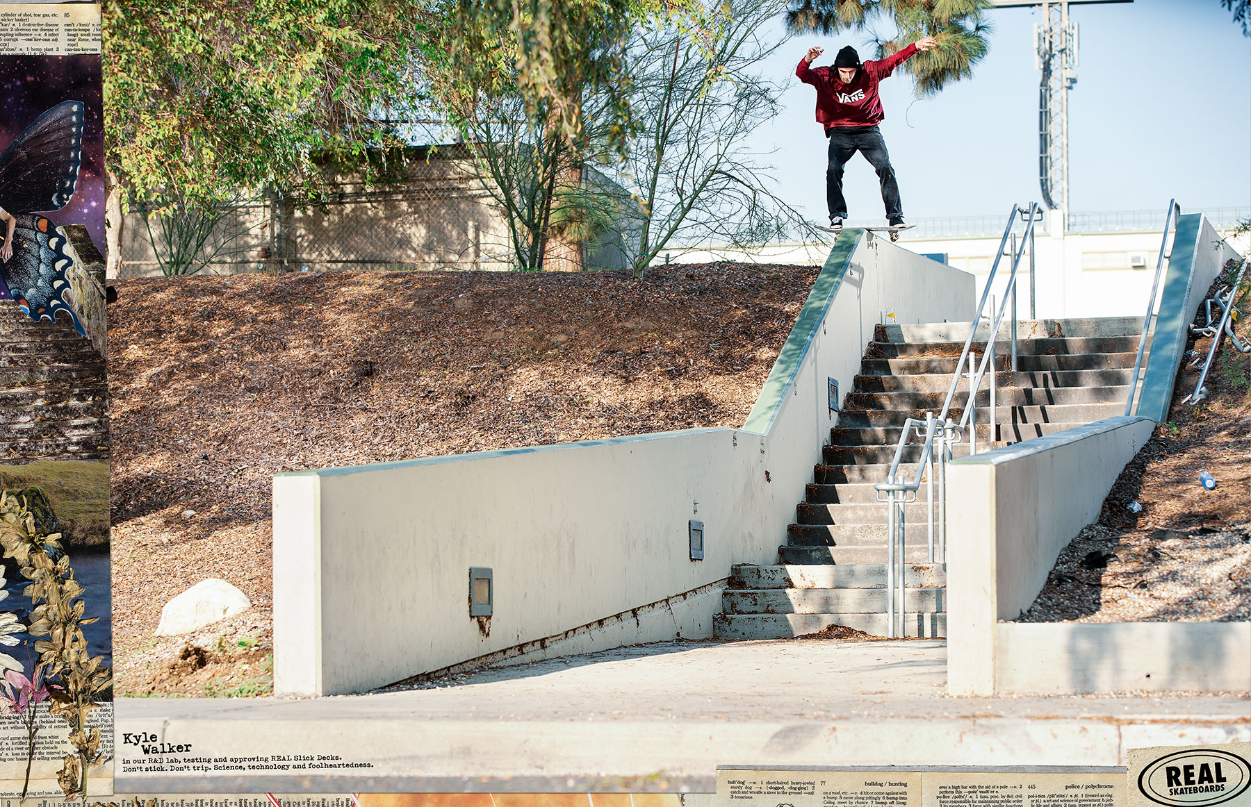 Recent Print Ads - Real Skateboards